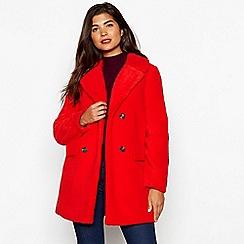 Red Herring - Orange borg teddy coat