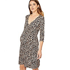 Red Herring Maternity - Brown leopard print jersey mini maternity dress