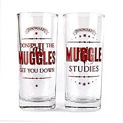 Harry Potter - Set of 2 Muggles drinking glasses