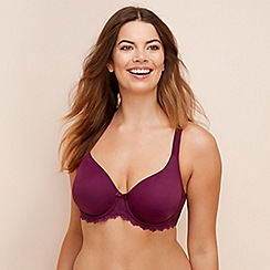 Gorgeous DD+ - 2 pack dark purple and beige underwired non-padded t-shirt bras