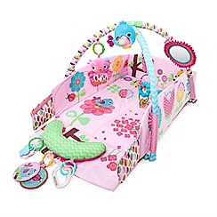 Bright Starts - 'The Sweet Songbirds™ Baby's Play Place™' activity gym