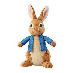 Beatrix Potter - 24cm Peter Rabbit plush toy