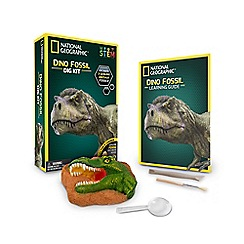 National Geographic - 'Dino Fossil' dig kit
