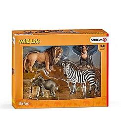 Schleich - Wild Life Starter Playset - 42387