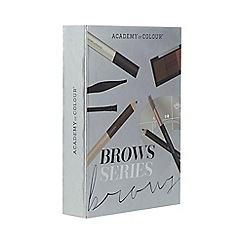 Academy of Colour - Brow Series set