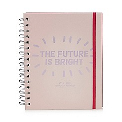 Pink Pineapple - The Future is Bright' 16 month planner