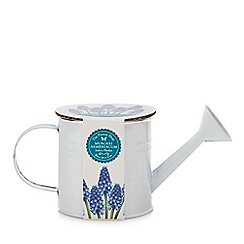 Flower Shop - Grow Your Own Muscari Armeniacum Indoor Watering Can Planter