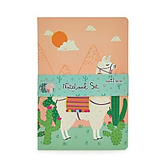 Sass & Belle - Set of 3 Multicoloured Llama Print A5 Notebooks