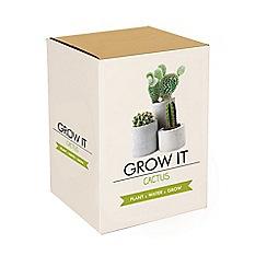 Flower Shop - Grow It Cactus Kit