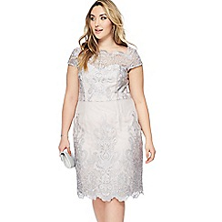 Chi Chi London - Grey lace 'Lossy' knee length plus size dress