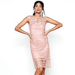 Chi Chi London - Pink lace 'Aleks' dress