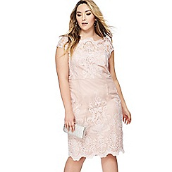 Chi Chi London - Taupe lace 'Aseelia' knee length dress