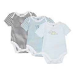 bluezoo - Babies blue striped dinosaur print bodysuits