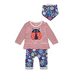 bluezoo - Baby Girls' Multicoloured Lady Bird Top, Leggings and Bib Set