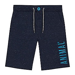 Animal - Boys' navy embroidered logo shorts