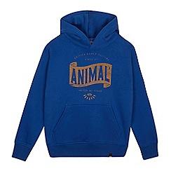 Animal - Boys' logo print hoodie