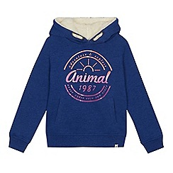 Animal - Boys' blue logo detail hoodie