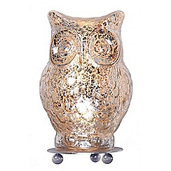 Home Collection - Evie Champagne Glass Owl Table Light