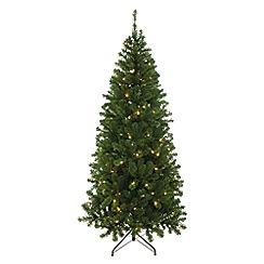 Festive - 5ft pre-lit Patterson pine Christmas tree