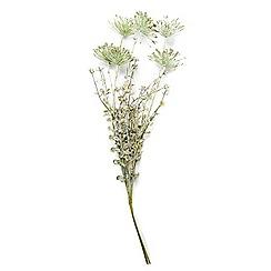 Abigail Ahern/EDITION - 'Silver Saltmarsh' Single Artificial Flower stem