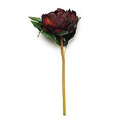 Abigail Ahern/EDITION - 'Peony Plum' Single Artificial Flower Stem