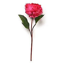 Abigail Ahern/EDITION - 'Peony Crimson' Single Artificial Flower Stem