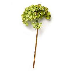 Abigail Ahern/EDITION - Hydrangea Green Artificial Flowers