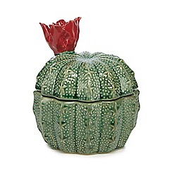 Ben de Lisi Home - Green ceramic cactus pot