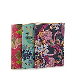 Butterfly Home by Matthew Williamson - Set of three multi-coloured exotic bird print notebooks
