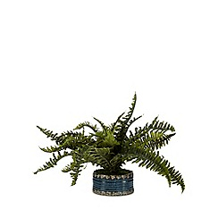 Home Collection - Artificial fern in a ceramic pot