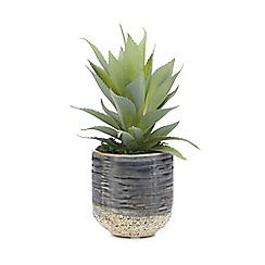Home Collection - Artificial green cactus plant in a pot
