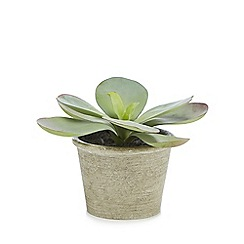 Parlane - Artificial kalanchoe in a pot
