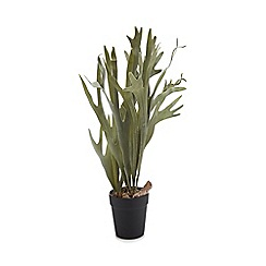 Parlane - Artificial staghorn plant in a black pot