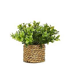 Kaemingk - Woven basket with artificial plant