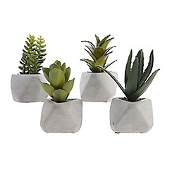 Kaemingk - Artificial succulent in a concrete pot