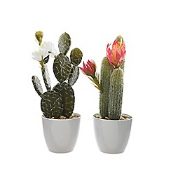 Kaemingk - Artificial cactus in a ceramic pot