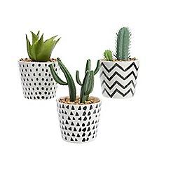 Kaemingk - Artificial succulents in a ceramic pot