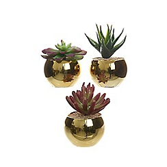 Kaemingk - Artificial succulent in a metal vase