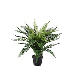Kaemingk - Artificial fern in a pot