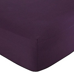 Home Collection - Plum cotton rich percale fitted sheet