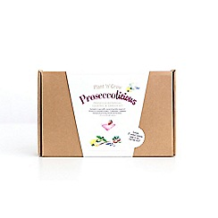 Plant 'n' Grow - Prosecco Botanical Cocktail and Garden Kit