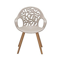 Debenhams - Pair of 'Andreas' carver dining chair
