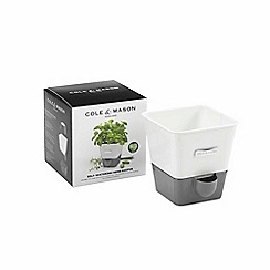 Cole & Mason - Self-watering potted herb keeper
