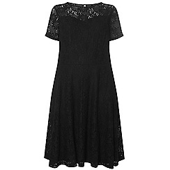 Dorothy Perkins - Black adele lace fit and flare dress