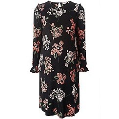 Dorothy Perkins - Curve blossom swing dress