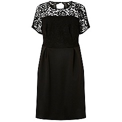 Dorothy Perkins - Curve black lace scuba fit and flare dress