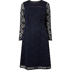 Dorothy Perkins - Curve navy lace long sleeve fit and flare dress