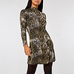 Dorothy Perkins - Green snake print high neck fit and flare dress
