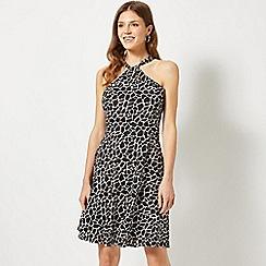 Dorothy Perkins - Black Giraffe Print Twist Neck Fit and Flare Dress