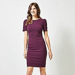 Dorothy Perkins - Purple Ruched Sleeves Bodycon Dress